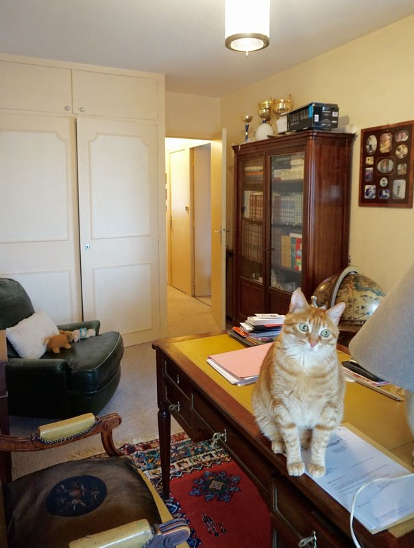 vente t3 82 m la rochelle 17000. Black Bedroom Furniture Sets. Home Design Ideas