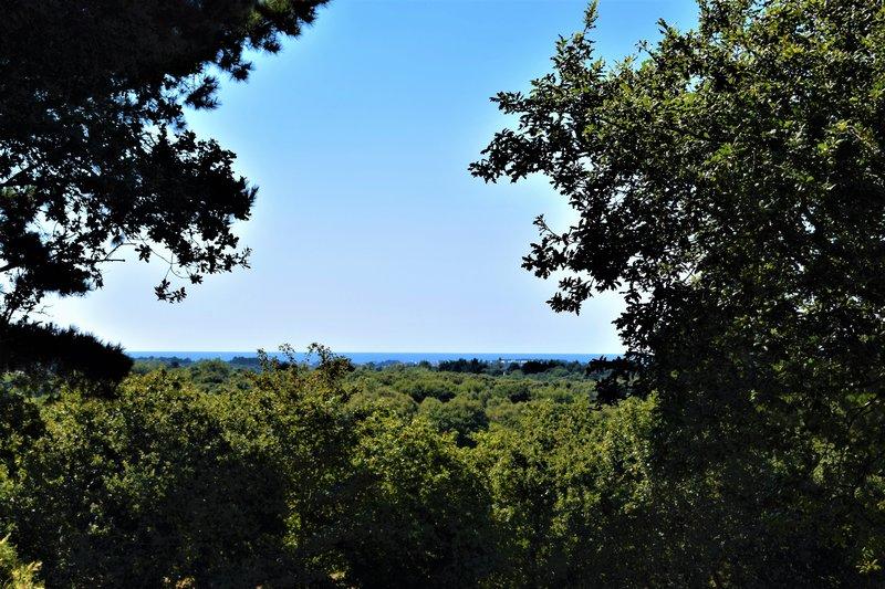 Vente terrain vue mer 4500 m² Perros Guirec 22700