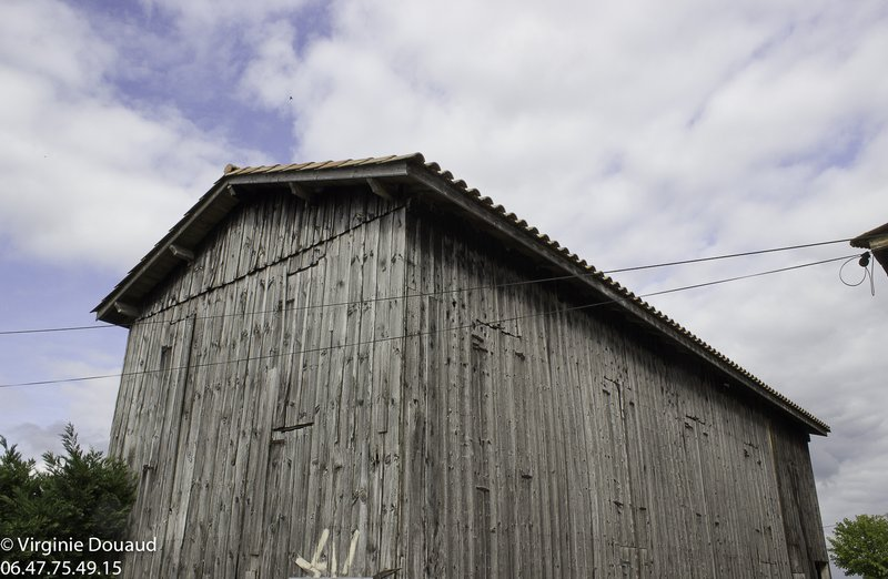 Séchoir à Tabac à rénover, 33210 Castets en Dorthe