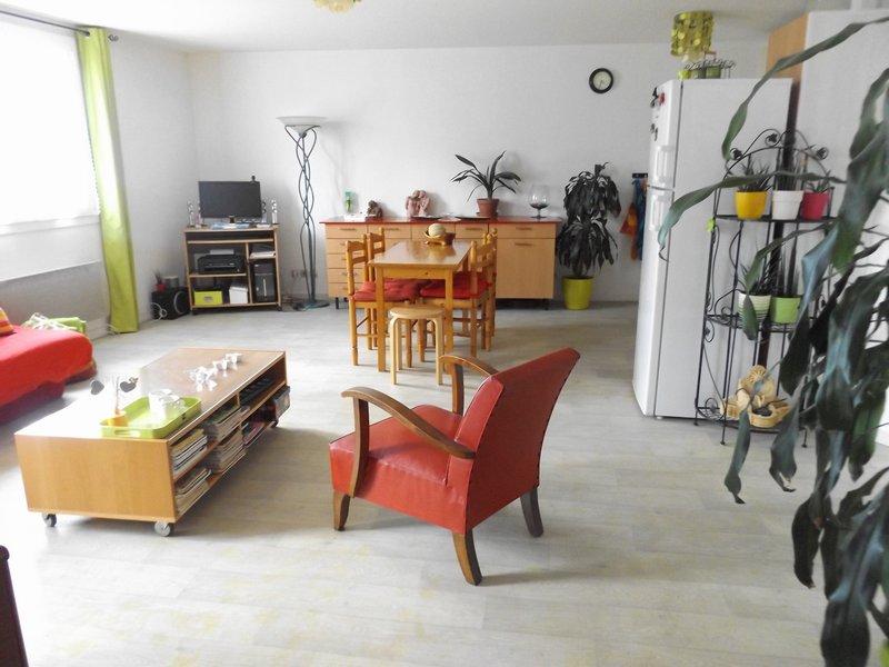 Grand T2 - 57 m² - Zola
