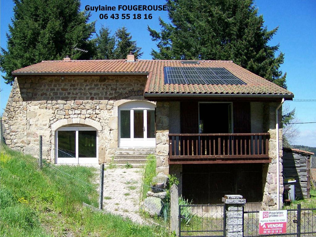 Maison en pierres sur 2 127 m² de terrain