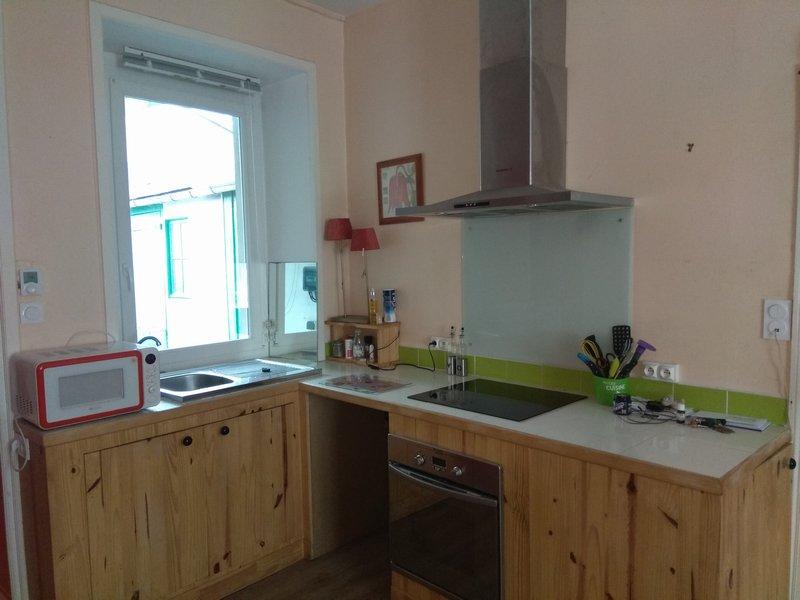 22000SAINT BRIEUC appartement avec jardin privatif
