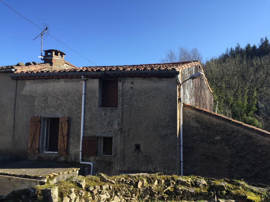 A vendre TARN secteur Castres 81100 Maison de village de 90 m2 avec jardin