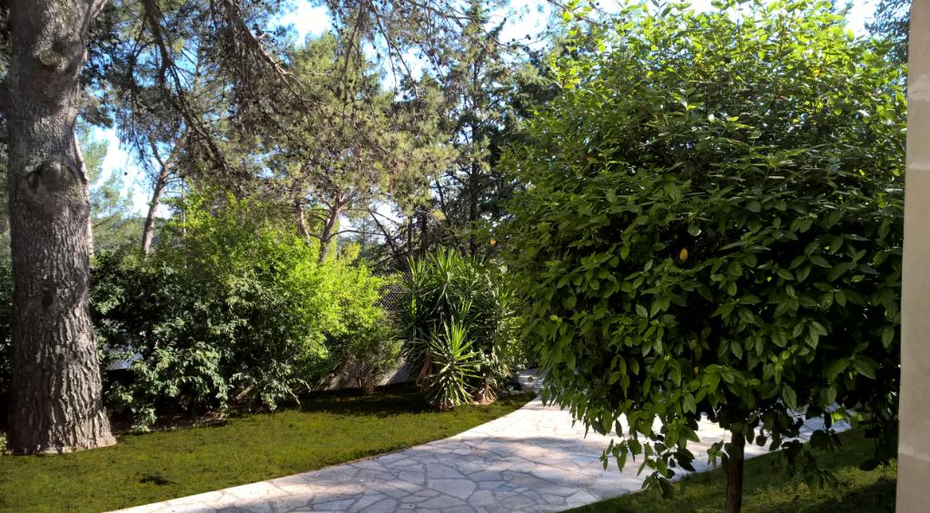 Villa Castelnau Le Lez 6 pièce(s) 140 m2