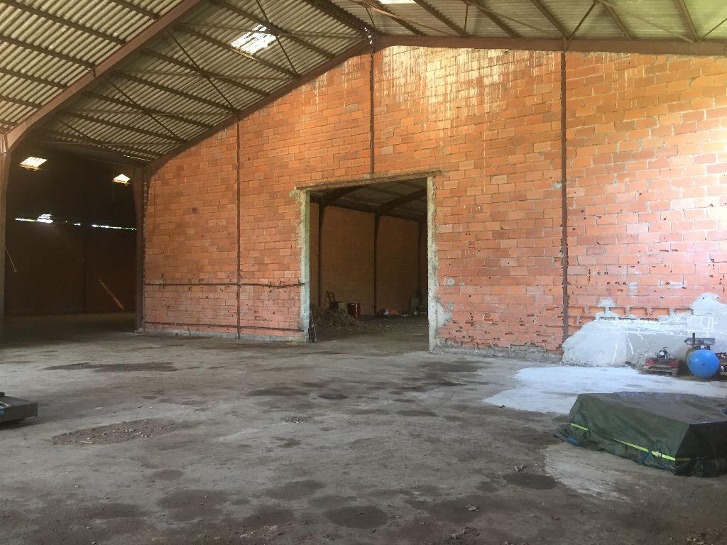 A vendre Entrepôts de stockages de 2178 m2  secteur Castres-Labruguiere