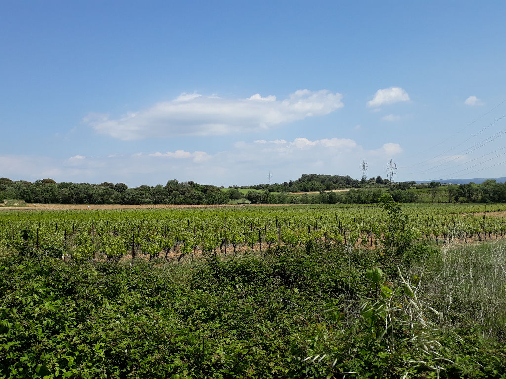 Terrain agricole ou loisirs 1500 m2