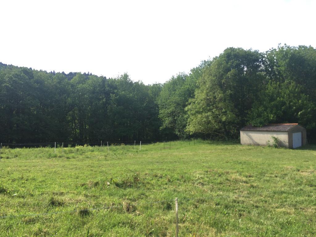 A vendre  grand Terrain  de 5347 m2 constructible secteur  81100 Castres-Mazamet