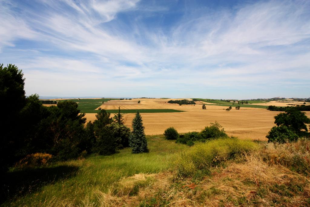 Terrain Carcassonne 5200 m2