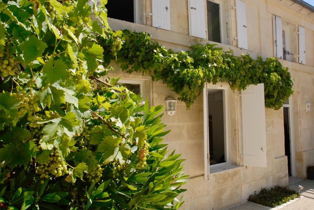 Maison St Savinien 8 pièce(s) 170 m2