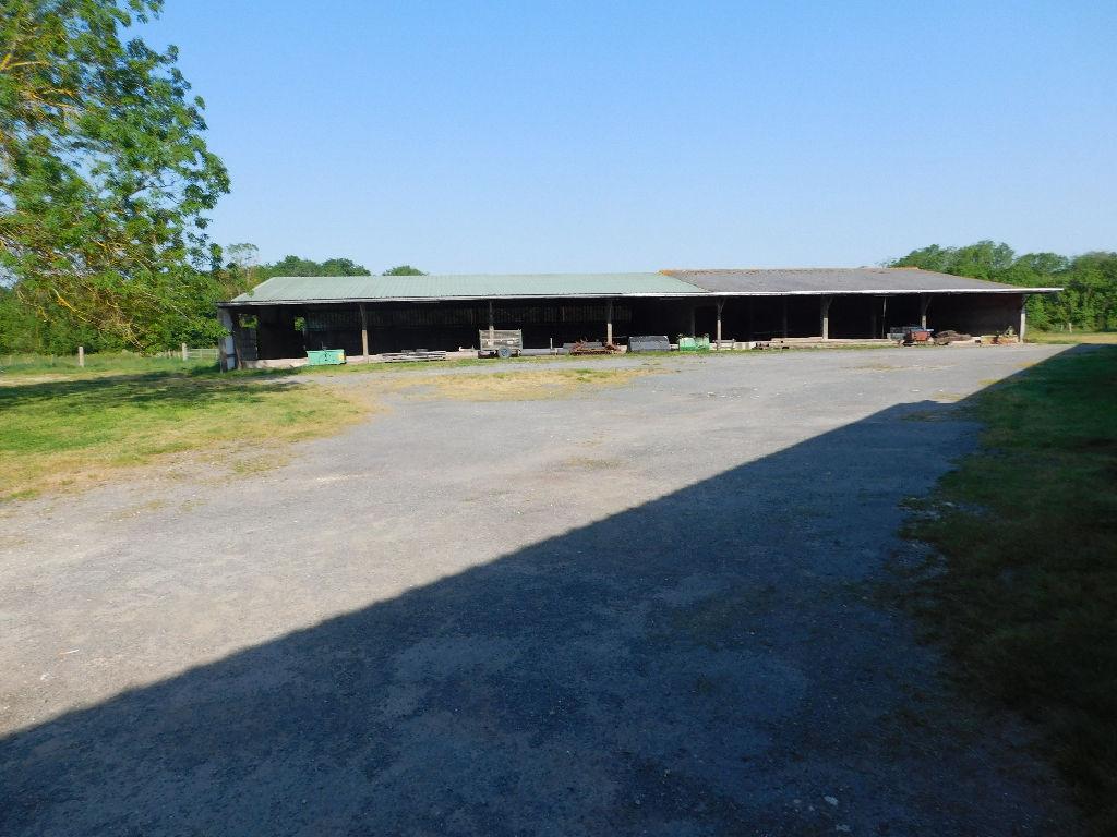 Corps de ferme Marennes 110m²  idéal chevaux