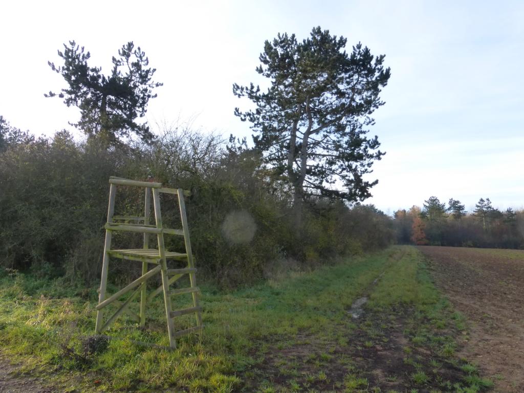 Propriété de chasse Thiaucourt Regnieville 77747670 m2
