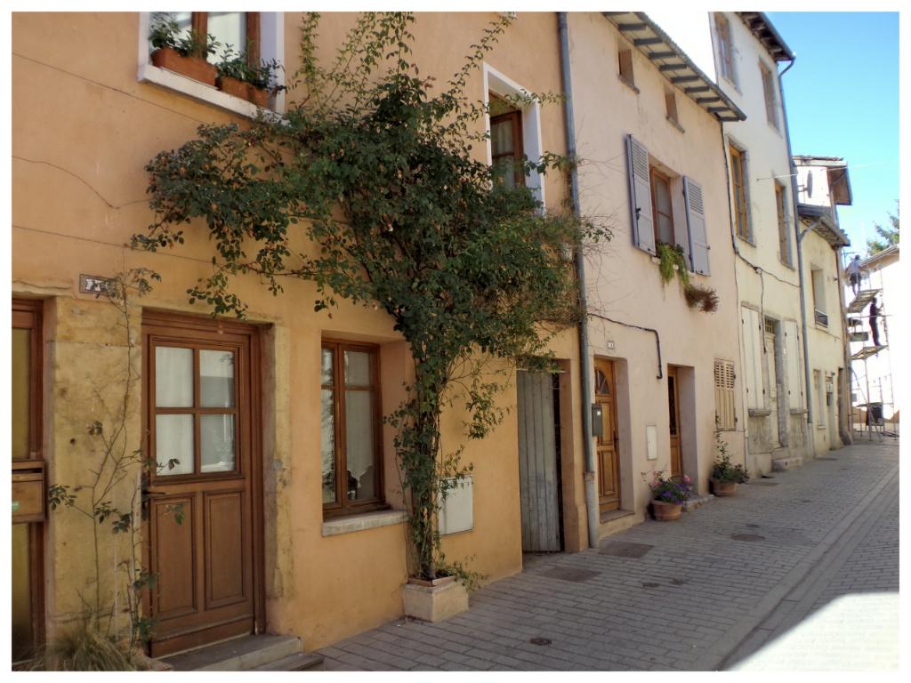 Appartement et local commercial à Neuville sur Saône proche de Lyon