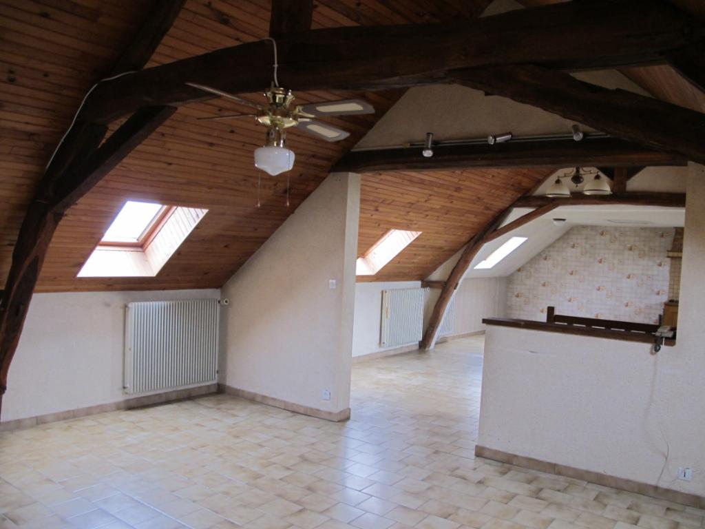 Maison + commerce à Doué la fontaine - 185198