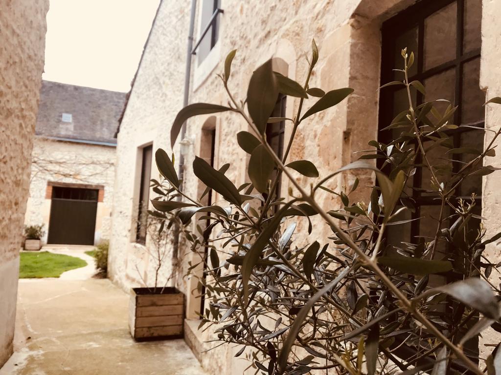 Hyper centre Noyen Sur Sarthe 7 pièce(s) 154 m2