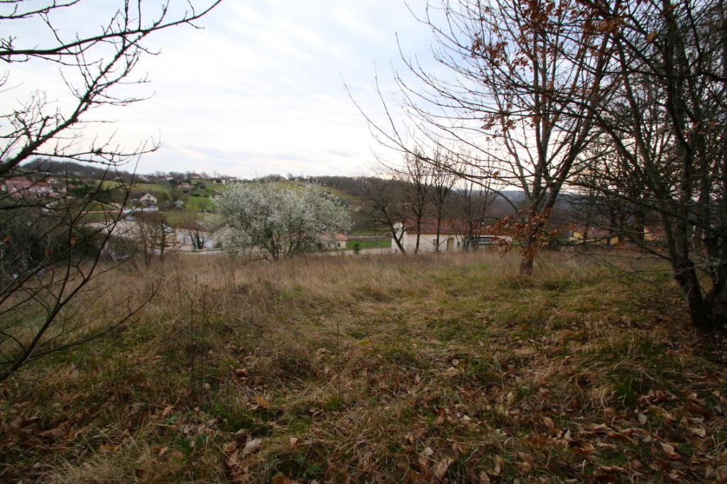 Terrain constructible Saint Pierre Lafeuille 1640 m2