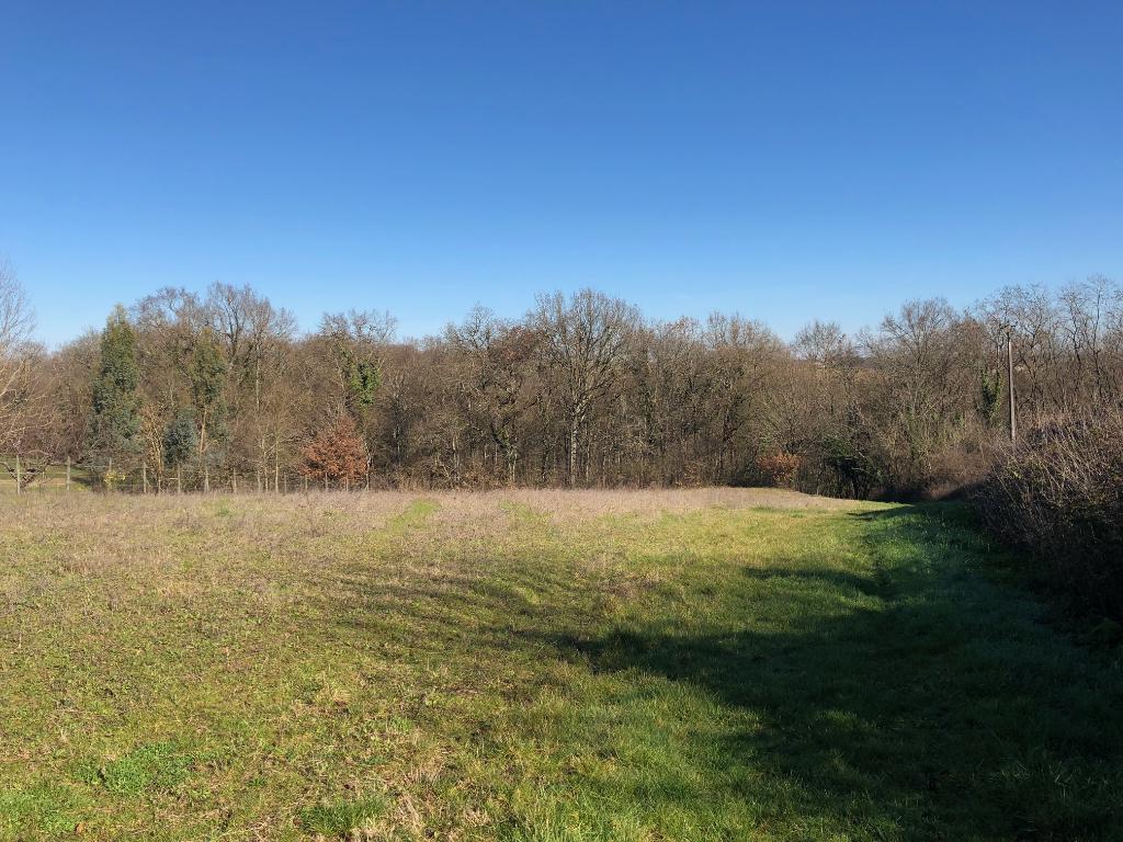 Marmande Terrain d'agrément 2,6 hectares en bois et prairie