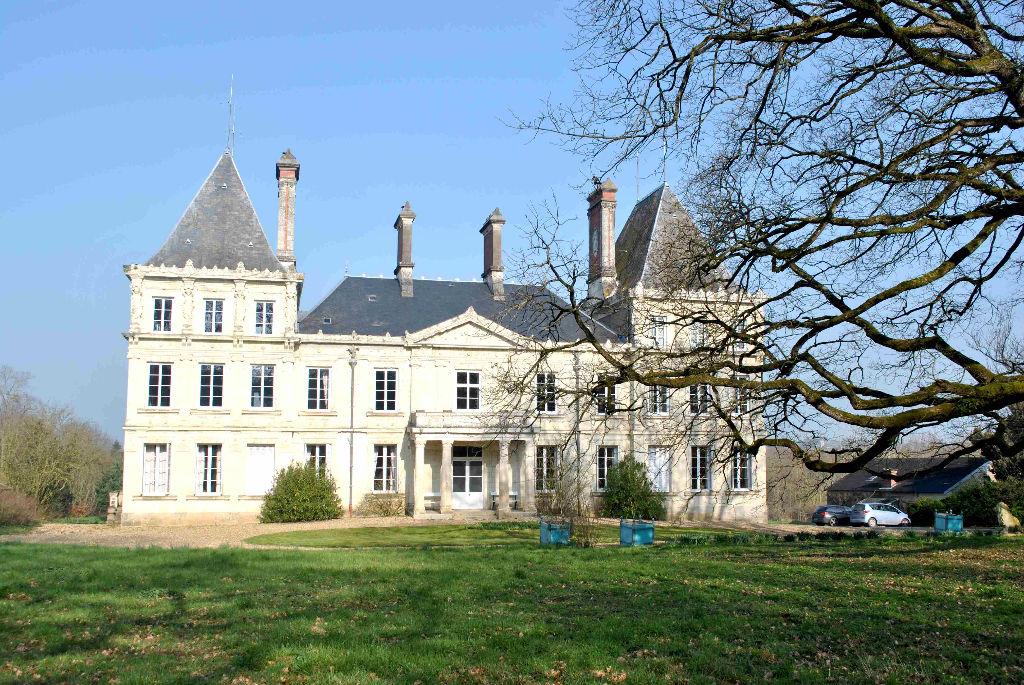 A vendre, Château 18 pièce(s) 600m²
