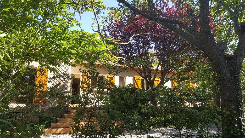 Maison + studio indépendant +terrasse de toit sur 1550 m2  de terrain arboré
