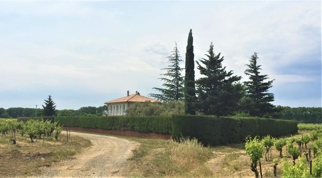Villa de 140 M2 avec piscine sur jardin de 2500 M2 + 4 HA de vignes BIO
