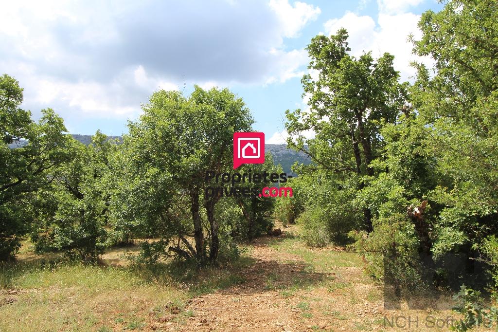 Terrain Plan D Aups Sainte Baume 1350 m2