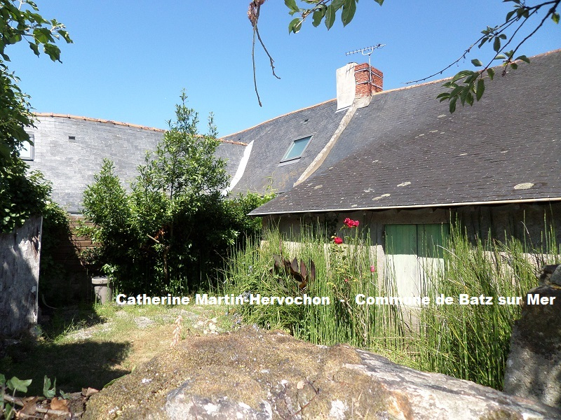 Longère avec jardin bucolique et annexe