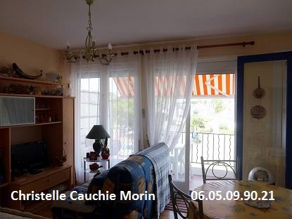 Appartement Le Pouliguen  avec terrasse