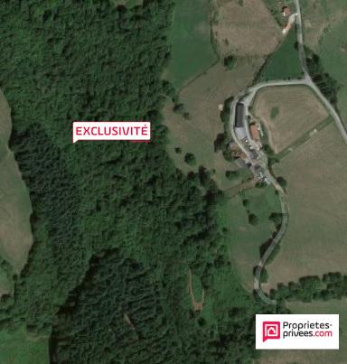 Forêt 3,20 ha de sapin Douglas 30 ans (Aveyron)
