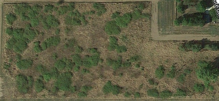 Terrain Poulaines 20570 m2