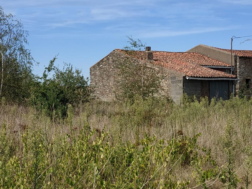 Bâtiment en pierre à rénover sur terrain 1700m²