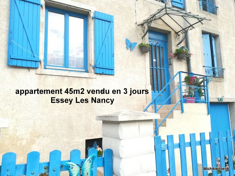 Appartement jardin privatif, cave, Essey Les Nancy 2 pièce(s) 45 m2