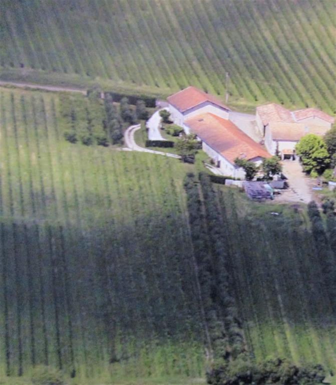 24230 Domaine viticole et polyculture 18.5 hect