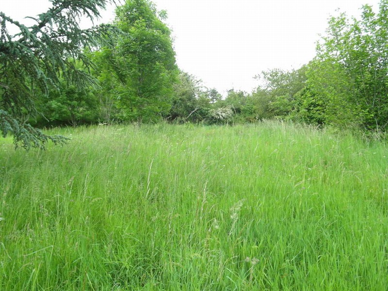 Terrain d un hectare
