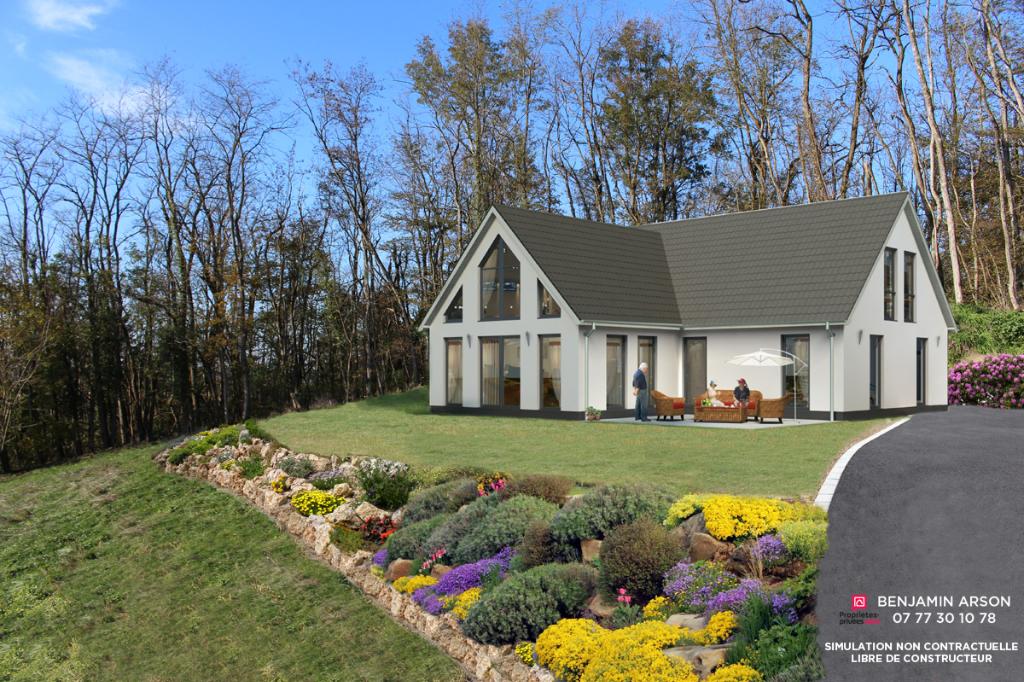 Terrain Domessin 1800 m2
