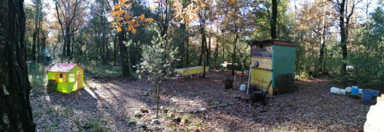 Domaine forestier Nans Les Pins