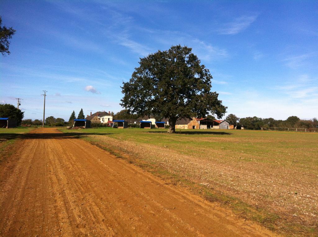 Domaine agricole Beaumont Pied De Boeuf 6 pièce(s) 209 m2