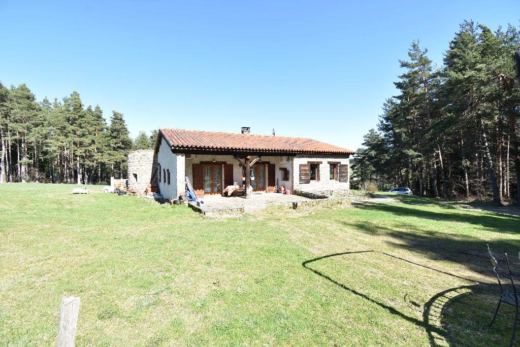 St Pal de Mons, 43620, maison de plain-pied en pierre, en pleine nature,111 m², 3 chambres