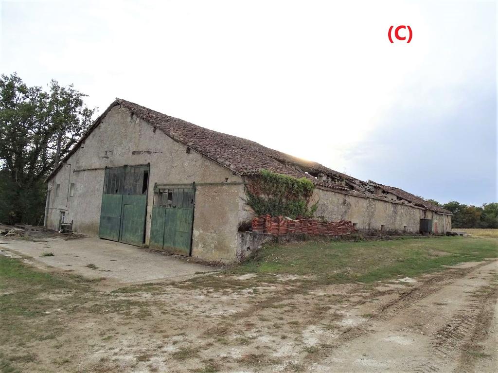 Grange en pierre de pays  de 600 m2 avec dépendance