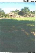 Terrain Saint Priest Bramefant 1239 m2