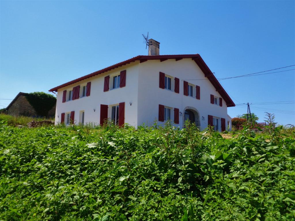 Maison rénovée 303 m2, terrain 3800 m2 VUE PYRENEES