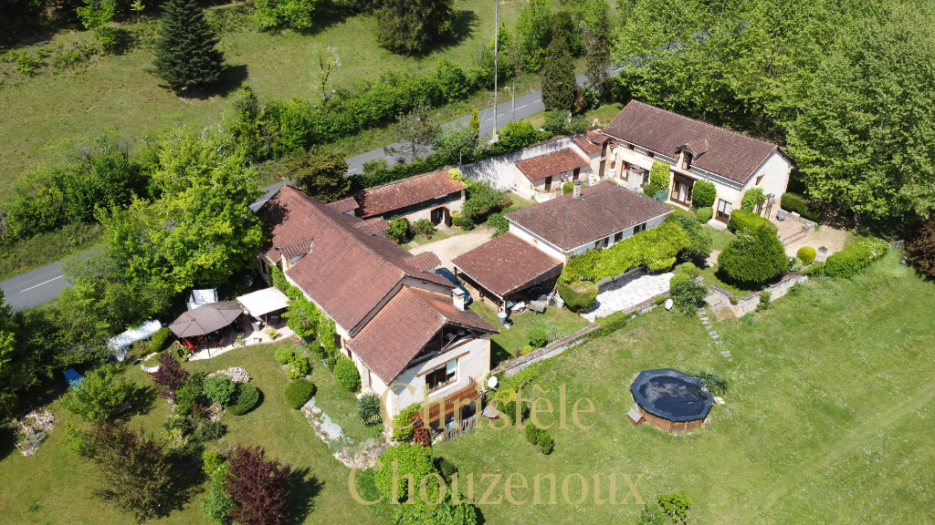 24290 Saint Léon sur Vézère : demeure de prestige sur 4 hectares