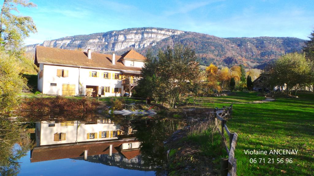 Propriété avec source et étang en Savoie