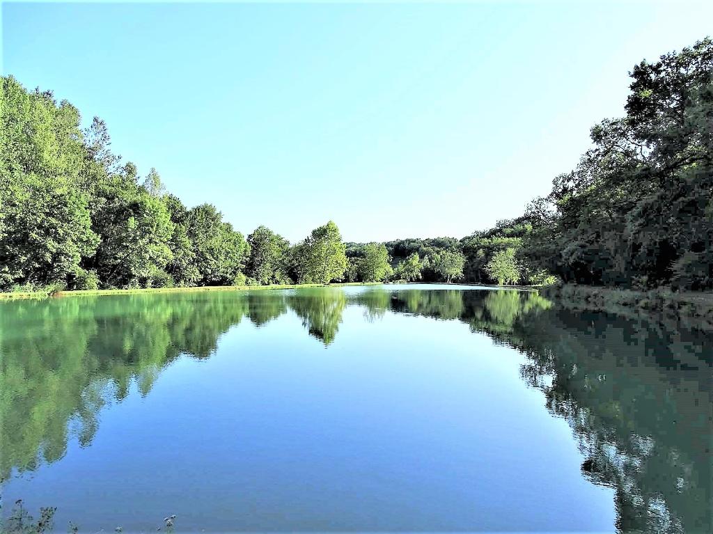 Château et dépendances 2000 m²  sur 80 Hectares avec parc et Lacs