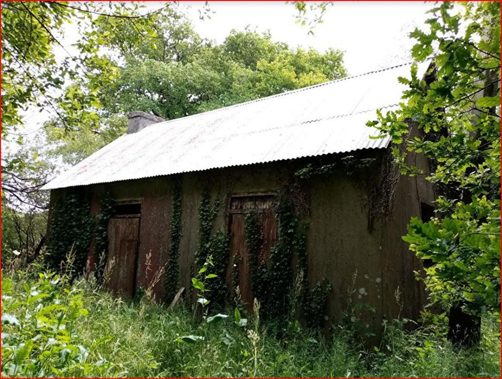 29530 Plonévez du Faou maison à rénover sur 5300 m²