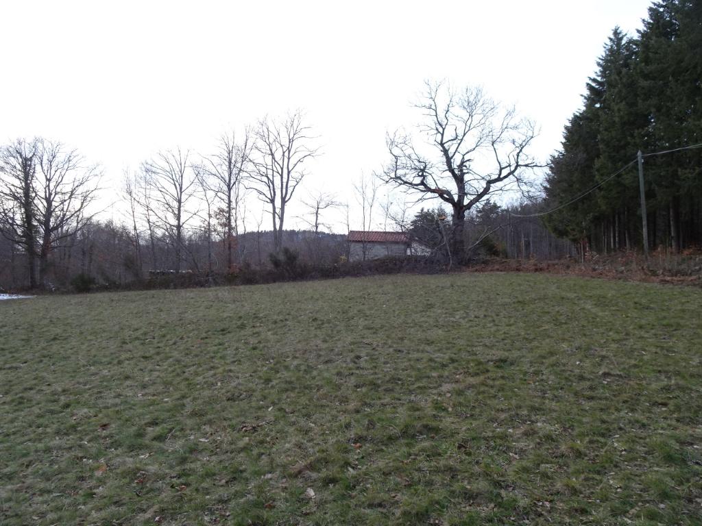 Terrain Roche En Regnier 2080 m2