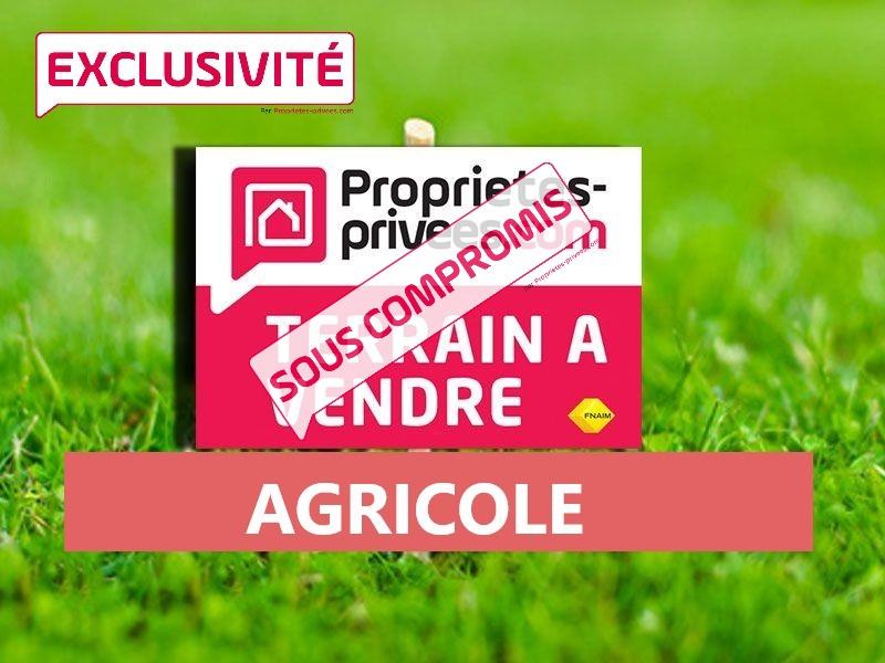 TERRAIN AGRICOLE 3 598 m2 - SOTTA - CORSE DU SUD
