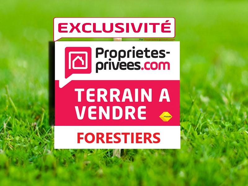 TERRAINS AGRICOLES 17 780 M2 - BORIVOLI - CORSE DU SUD