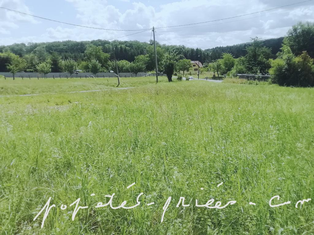 Marmoutier / Wasselonne Terrain  à Birkenwald 12,28 ares