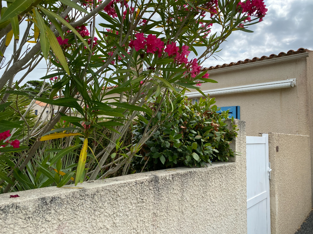 Maison Avec Jardin 2 pièce(s) 34 m² Dolus D Oleron -17550 - Ile d' Oléron --