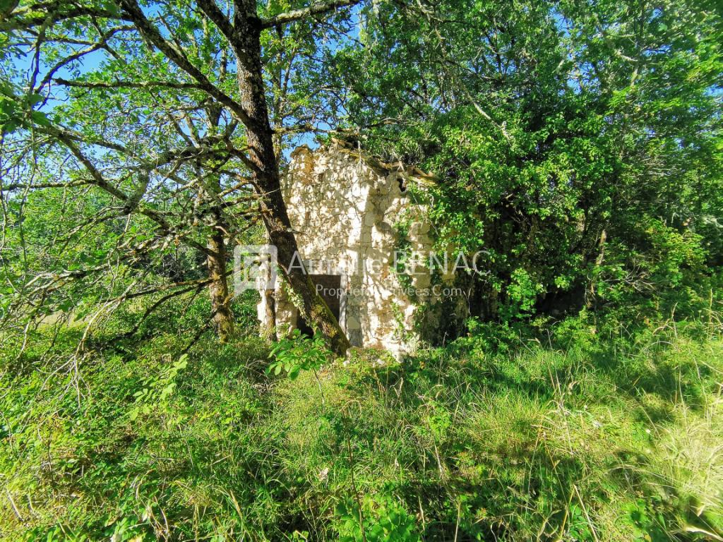 Terrain Saint Daunes 18175 m² dont 15365 m² constructible