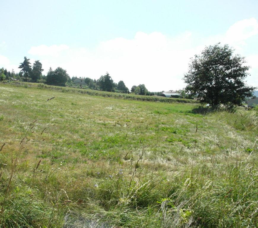 Terrain Riotord 1000 m²
